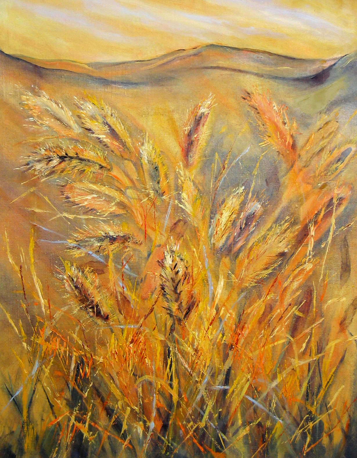 grasses-oli-on-canvas-36cm-x-46cm